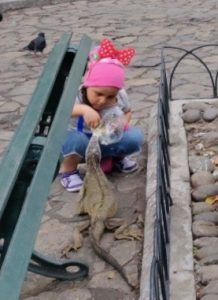 girl feeding inguana in Iguana Park