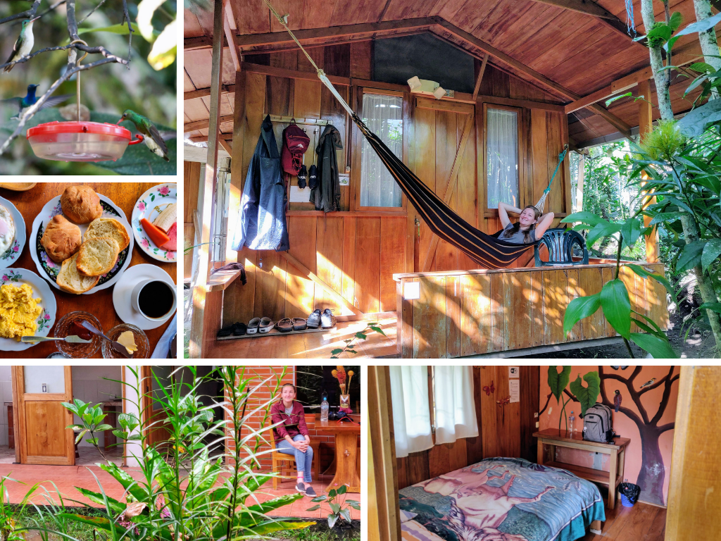 Cabanas Armonia collage of this cabin in Mindo: hummingbirds, breakfast, Heather in a hammock, interior of room