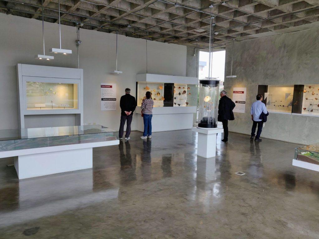 Pumapungo Museum in Cuenca