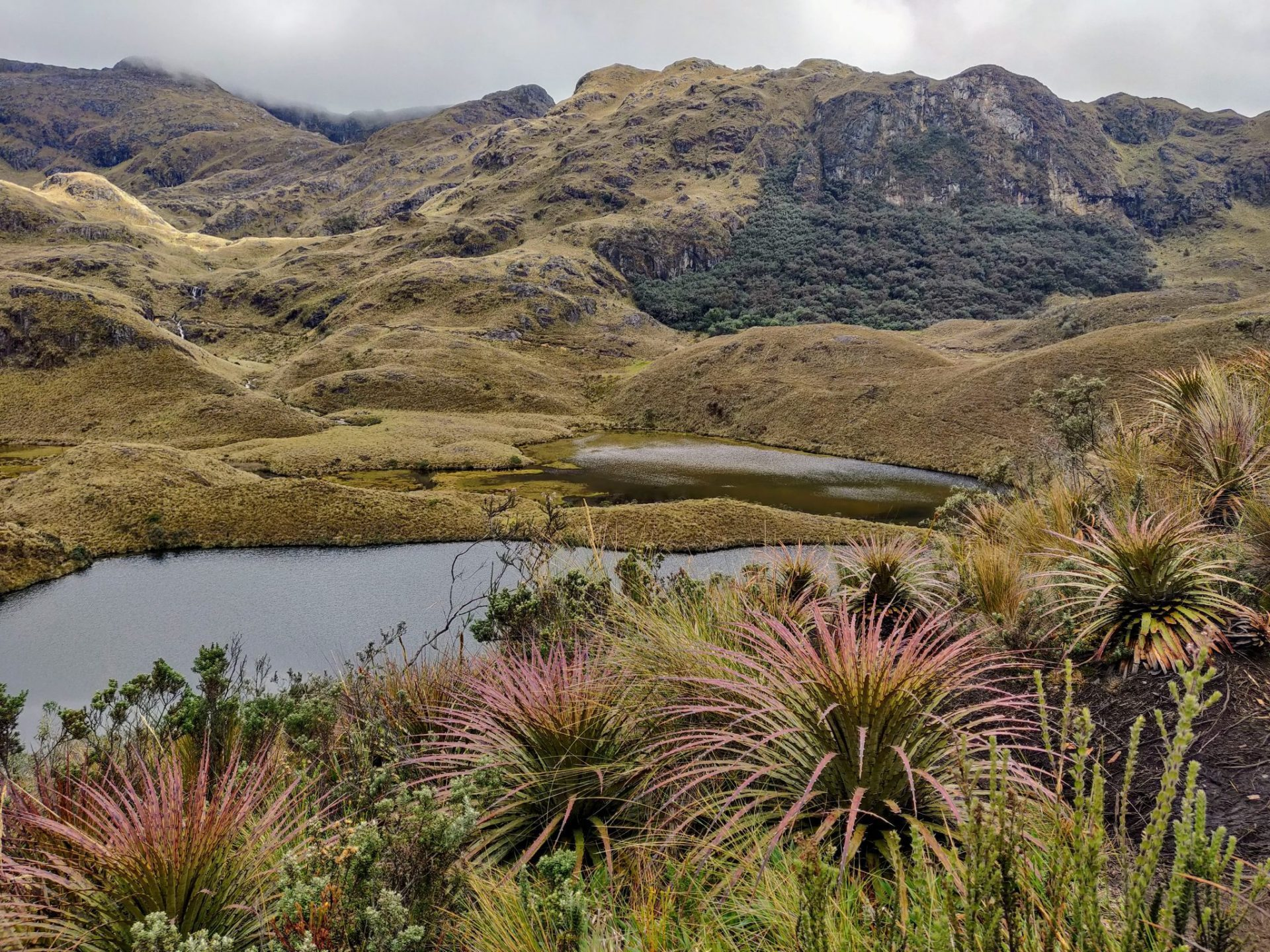Lake and mountains in Cajas National Park near Cuenca Ecuador