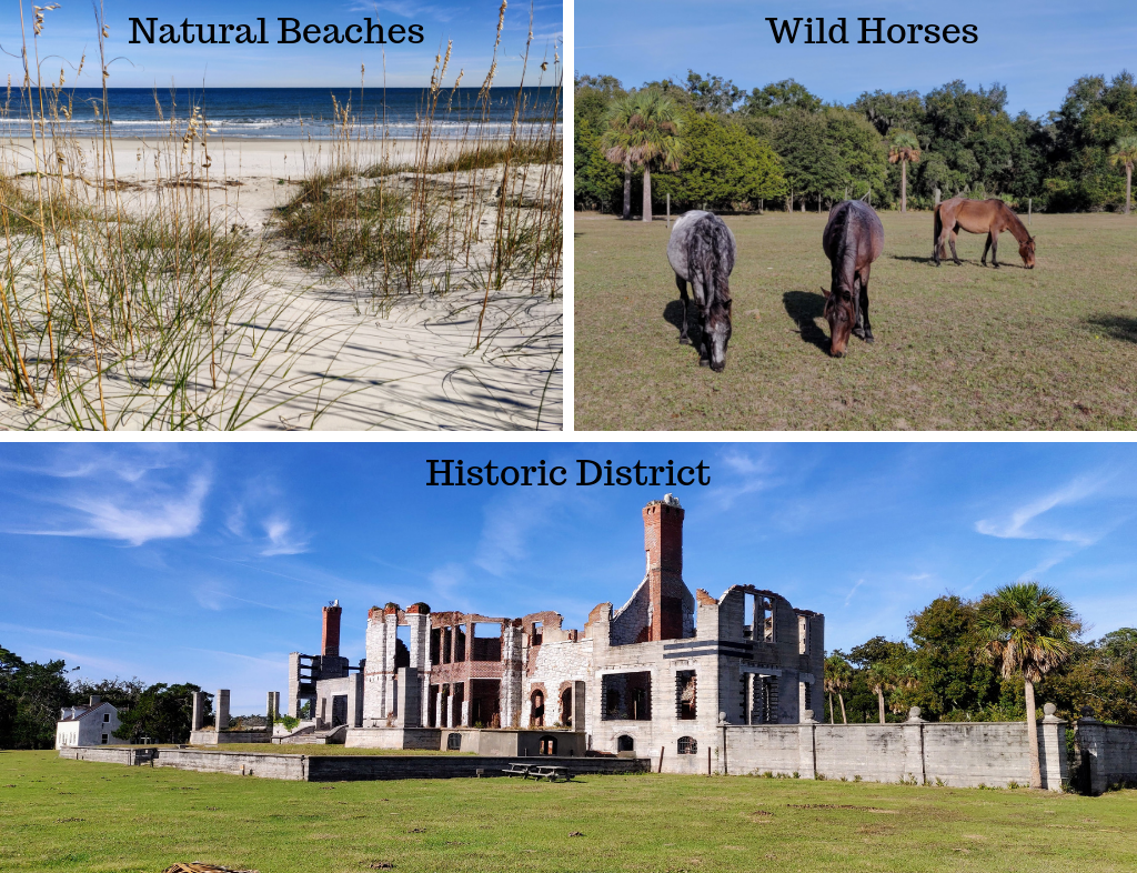Collage of natural beaches, wild horses, and Dungeness mansion in historic district