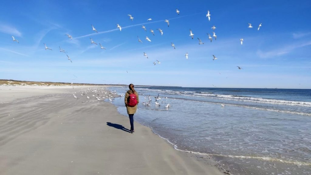 Heather walking on the beach in full winter coat as seagulls fly in the air